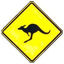 kengouras