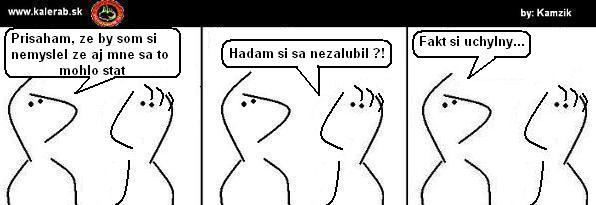 65 - vtipný obrázok - Kalerab.sk