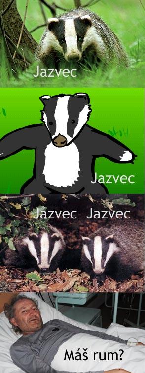 jazvec - vtipný obrázok - Kalerab.sk