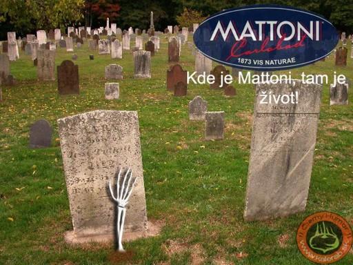 mattoni zivot - vtipný obrázok - Kalerab.sk
