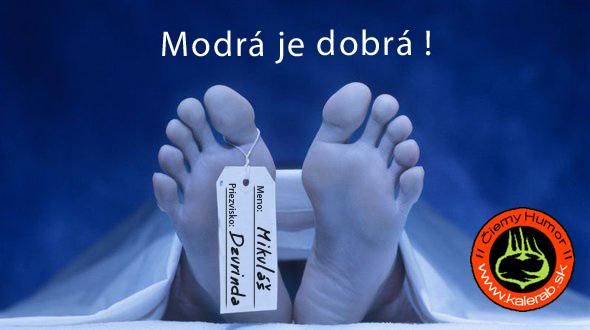 modr  je dobr  - vtipn� obr�zok - Kalerab.sk