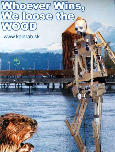 robotbobor - vtipný obrázok - Kalerab.sk