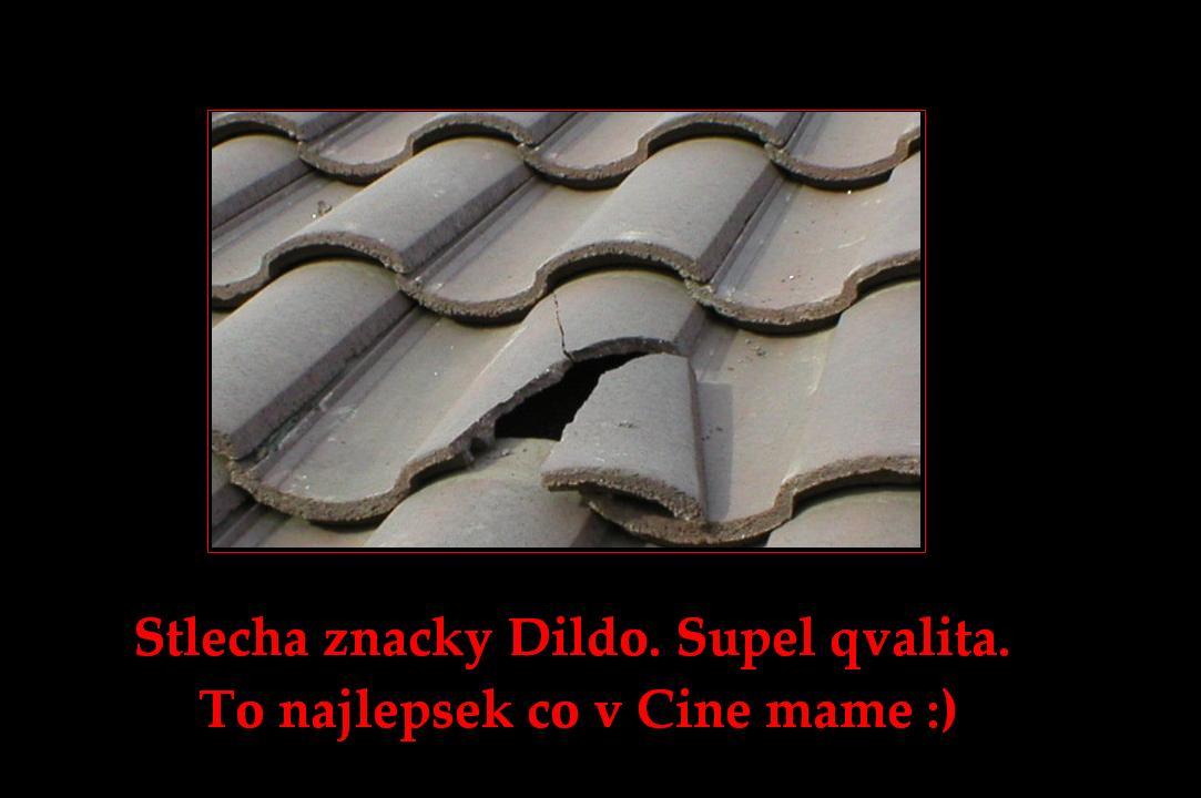 strecha - vtipný obrázok - Kalerab.sk